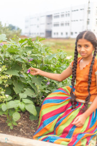 The children enjoy spending time outside learning about the plants and vegetables